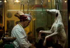 Dog meat can be found on the Cantonese local markets