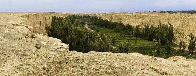 Oasis in Turpan, Xinjiang Province, China