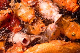 Koi Fish fighting for food