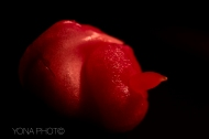 Red Pepper Foetus