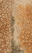Cracks in the iron rich soil of Zhangye, Gansu Province, China