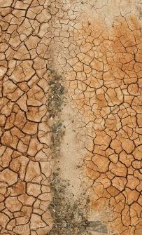 Cracks in the iron rich soil of Zhangye, Gansu Province, China