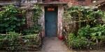 Doors #7