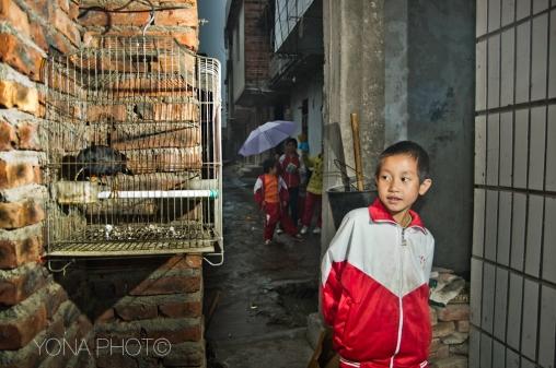 Hakka Boy and bird, PingAn, Guangdong, 2012