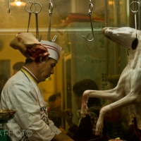 Dog meat and its uses around the world