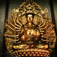 One bodhisattva, a thousand hands and infinite prayers