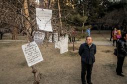 Man staring at dating profiles - Shanxi Province