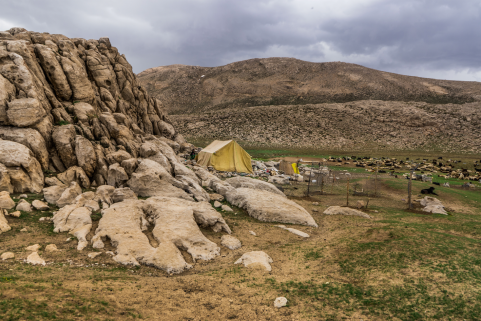 High altitude encampment of small family with large flock of sheep - 2016